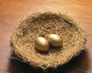 巣の中の金の卵2個の素材 [FYI00943462]