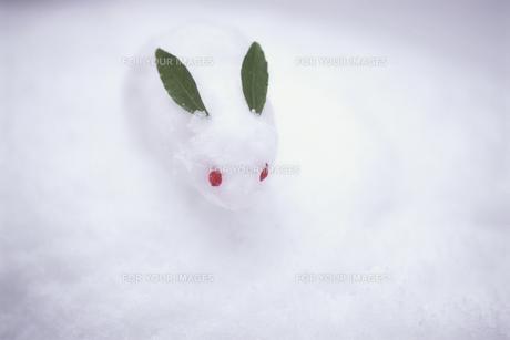 雪ウサギの素材 [FYI00943869]