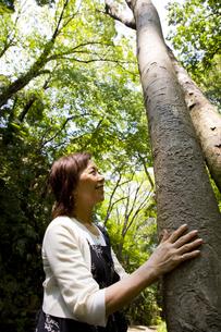 樹木をさわる女性の素材 [FYI00944098]