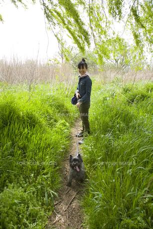 犬の散歩をする日本人20代女性の素材 [FYI00944310]