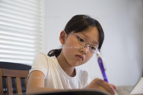 勉強する少女の素材 [FYI00944336]