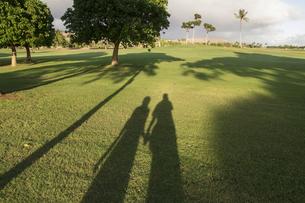 芝生に写る二人の影の素材 [FYI00944377]