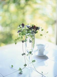 花瓶のグリーンとカップの素材 [FYI00944499]