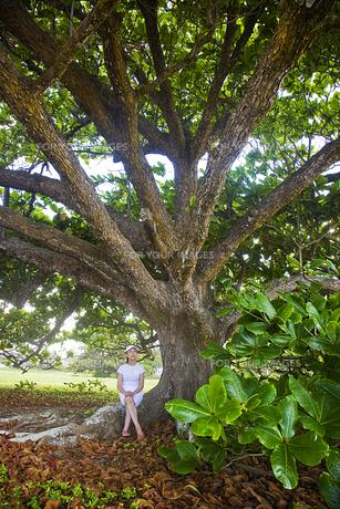 大木に座るシニア女性の素材 [FYI00944899]