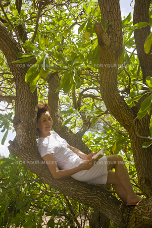 大木に座り本を読むシニア女性の素材 [FYI00944945]