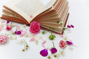 本に花を飾るの素材 [FYI00945082]
