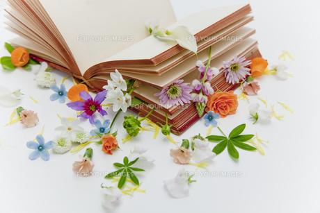本に花を飾るの素材 [FYI00945152]