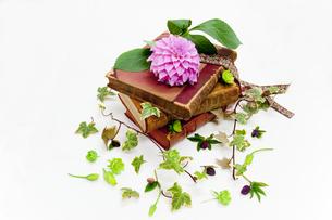 本に花を飾るの素材 [FYI00945176]