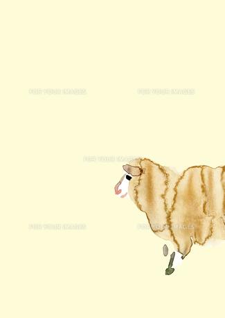 淡い黄色地右側から進入する羊の素材 [FYI00945438]