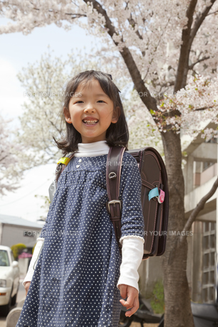 桜の下で新一年生の素材 [FYI00945447]