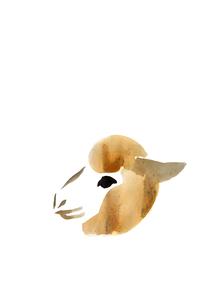 無地中央羊の頭の素材 [FYI00945476]