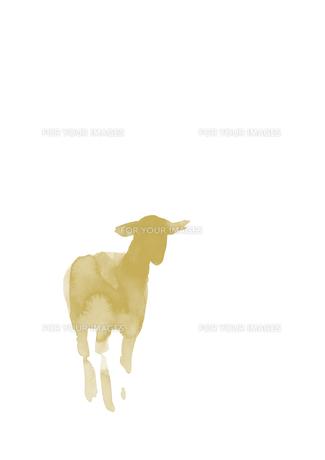 無地左寄り立つ羊の素材 [FYI00945510]