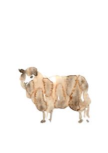 無地正面向羊の素材 [FYI00945515]