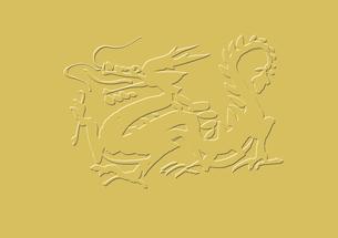 歩く龍の素材 [FYI00945698]