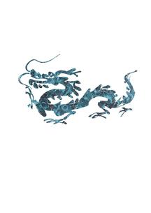 歩く龍の素材 [FYI00945751]
