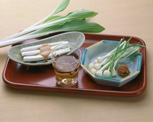 山菜 うるい・梅酒・のびるの素材 [FYI00947189]