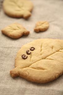 ECOの文字がついた葉型のクッキーの素材 [FYI00947748]
