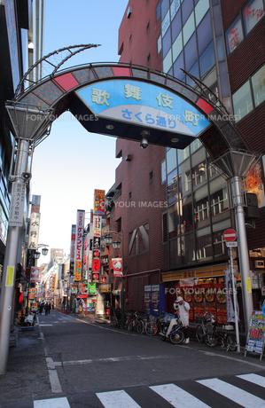 歌舞伎町さくら通りの素材 [FYI00949084]