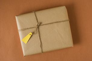 小包の素材 [FYI00949548]