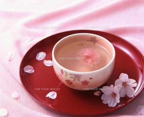 桜湯の素材 [FYI00949693]