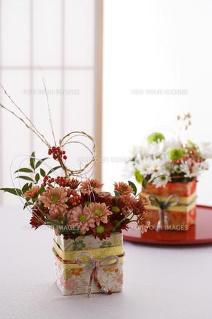 正月の花 Fyi00949881 ロイヤリティフリー素材 写真素材イラスト