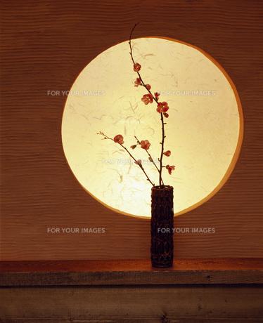 丸窓と花の素材 [FYI00949897]