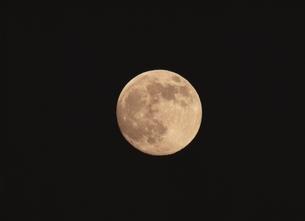 満月の素材 [FYI00950720]