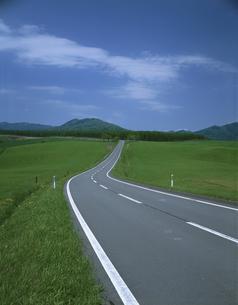 緑と道路の素材 [FYI00950808]