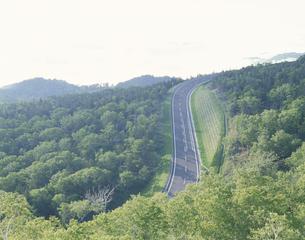 新緑の知床横断道路の素材 [FYI00951247]