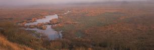 コッタロの湿原の朝 女満別附近の素材 [FYI00952256]