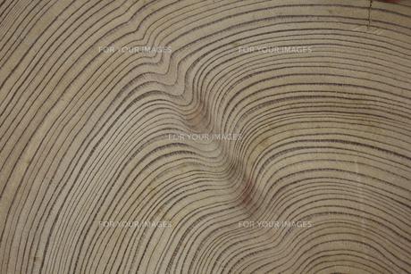 屋久島杉の年輪の素材 [FYI00952337]