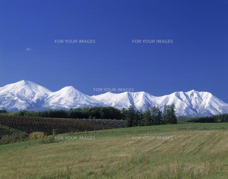 新雪の大雪山と秋の田園の素材 [FYI00952993]