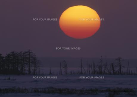 尾岱沼の夕日の素材 [FYI00953296]