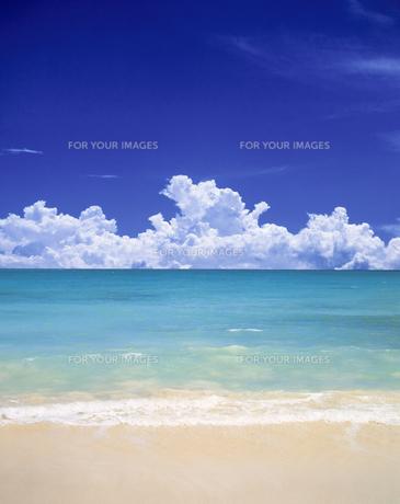 海と雲の素材 [FYI00954696]
