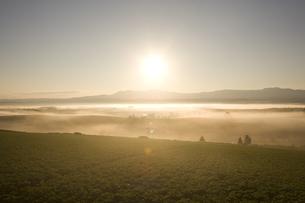 朝霧と日の出の素材 [FYI00954924]