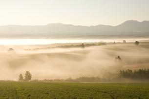 朝霧と日の出の素材 [FYI00954991]
