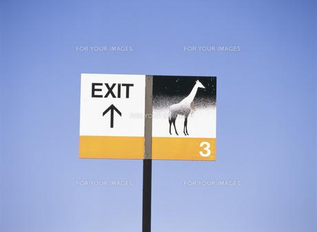 サンディエゴ動物園の出口の看板の素材 [FYI00955051]