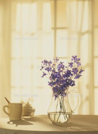 花瓶に活けた花の素材 [FYI00959664]