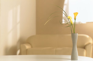 花瓶に生けた花の素材 [FYI00959826]