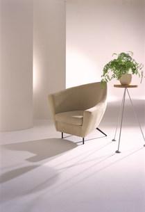 ソファーと植物のある空間の素材 [FYI00959837]