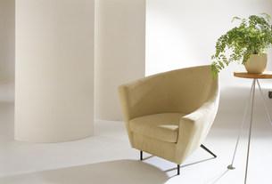 植物とソファーのある空間の素材 [FYI00959880]