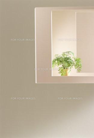 窓の素材 [FYI00959899]