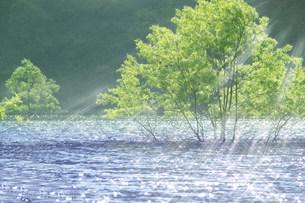 虹の湖の素材 [FYI00960091]