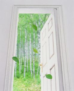 ドアの素材 [FYI00960236]