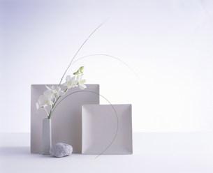 白い二枚の皿と白い花の素材 [FYI00960370]