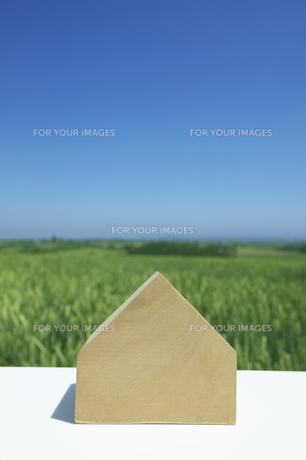 家の形の木と丘の素材 [FYI00960427]