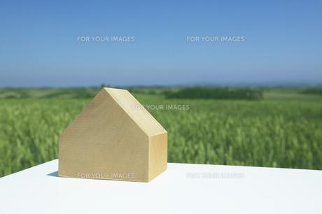 家の形の木と丘の素材 [FYI00960499]