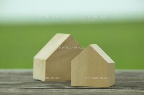 ふたつの家の形の木と草原の素材 [FYI00960529]