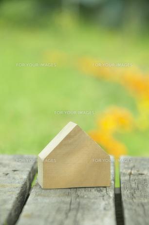 家の形の木と庭の花の素材 [FYI00960532]