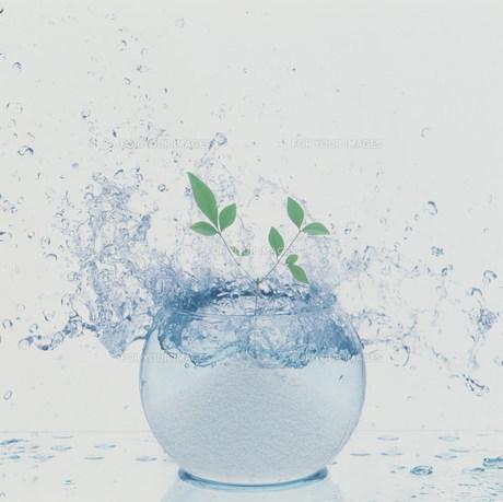 球体と水の素材 [FYI00960584]
